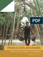 PRODUCCION BANANERA - Impacto en la Salud y el Ambiente