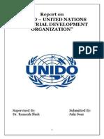Report on UNIDO
