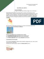 Material de Apoyo (Prueba 08.05.09)