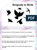 A brief guide to birds