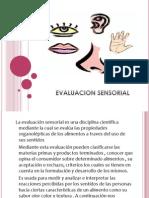 Evaluacion Sensorial Olfato
