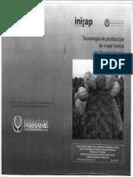Tecnologia de Produccion de Nopal Tunero en Aguascalientes