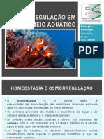 Osmorregulação em meio aquático (11.jun.13)