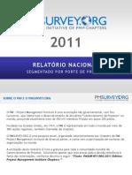 Relatório 2011 - Segmentado por Porte de Projeto