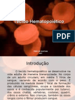 Tecido Hematopoiético