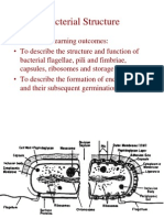 bactstructureflagellaetc[1]