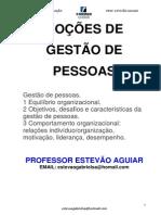 GESTÃO DE PESSOAS_Prof. Estevão Aguiar
