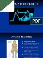 Curso de Paramedico- Sistema Esqueletico