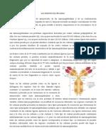 Las Inmunoglobulinas(Separata)