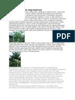 5 jenis pokok