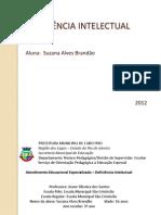 Deficiencia Intelectual. PDI