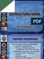 Estructura Viral Luisana