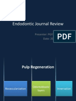 Endo Journal Review