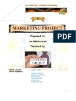 MARKETING PLAN FOR A NEW PRODUCT WITH DIAGRAM