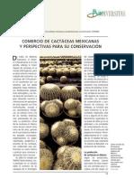 Comercio de Cactaceas Mexicanas