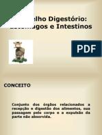 Aparelho Digestorio Usp (1)