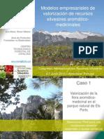 Modelos empresariales de valorización de recursos aromáticos y medicinales