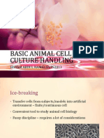 Basic Animal Cell Culture Handling