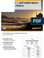 OpenSAP HANA1 Week 01 Unit 01 Application Basics Presentation