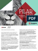 Programa Bolsillo Pilar 2013