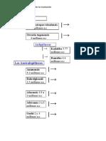 9518742 Arbol Genealogico de La Evolucion