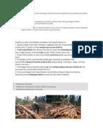 Kurangnya Kesadaran Akan Pentingnya Manfaat Hutan