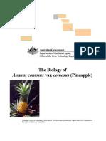 biologypineapple08_2