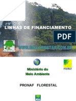 Linhas de Financiamentos Florestais
