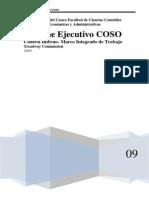 Informe Ejecutivo COSO