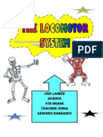 Unit 2 the Locomotor System