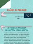 semiologiaabdomen-120820083200