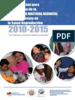 Plan de Reduccion de Mortalidad Materna_2
