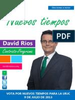 Programa_ElectoralDavidRiosInsua.pdf