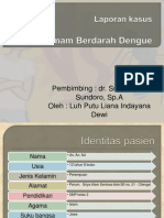 Liana DHF Ppt