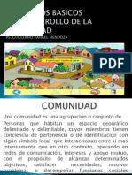 Conceptos Basicos d.comunidad- 13