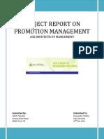 Promotion Management Project1 (1)