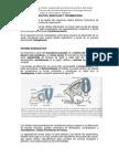 Sistema Tegumentario Esqueletico y Muscular