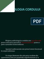 Curs Embrio + Anatomie