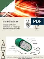 Expo 4 Vibrio Cholerae