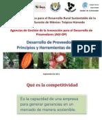 Capacitacion Desarrollo de Proveedores 2011