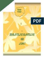 Zdravilne_rastline