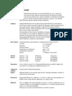 gipsgrund.pdf