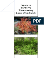 Japanese barberry brochure by Wabasha SWCD, October 2013