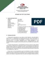 99 Silabos Fe y Cultura 2013 II(2)
