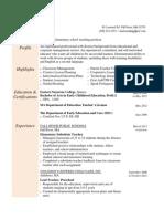 lmelo resume - portfolio style 2013