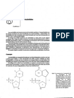 cap8nucleótidos