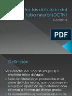 Defectos Del Cierre Del Tubo Neural (DCTN