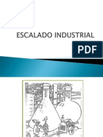 Escalado Industrial 2013-09-26