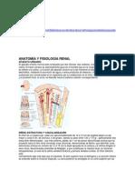 biofisiología Renal