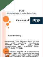 PCR& RFLP (A1)